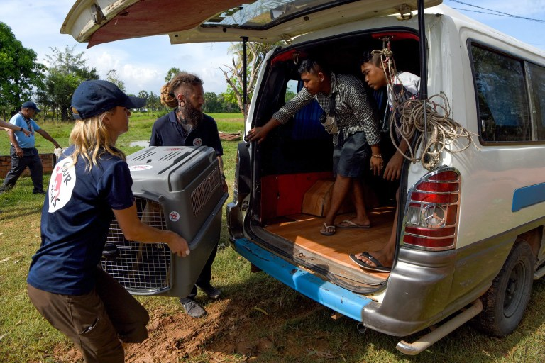 This photo taken on October 27, 2019 shows members of the non-governmental organisation (NGO) Four Paws team carrying a dog in a cage to a van during an operation to rescue dogs from the slaughterhouse in Takeo province. - Cambodian dog meat traders drown, strangle and stab thousands of canines a day in a shadowy but sprawling business that traumatises workers and exposes them to deadly health risks like rabies. (Photo by TANG CHHIN Sothy / AFP) / TO GO WITH Cambodia-animal-dog-food, FEATURE by Joe FREEMAN and Suy SE (Photo by TANG CHHIN SOTHY/AFP via Getty Images)