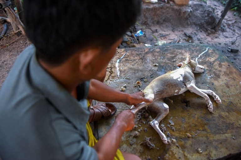 EDITORS NOTE: Graphic content / This photo taken on October 25, 2019 shows a man removing fur from a dog at a slaughterhouse in Siem Reap province. - Cambodian dog meat traders drown, strangle and stab thousands of canines a day in a shadowy but sprawling business that traumatises workers and exposes them to deadly health risks like rabies. (Photo by TANG CHHIN Sothy / AFP) / TO GO WITH Cambodia-animal-dog-food, FEATURE by Joe FREEMAN and Suy SE (Photo by TANG CHHIN SOTHY/AFP via Getty Images)