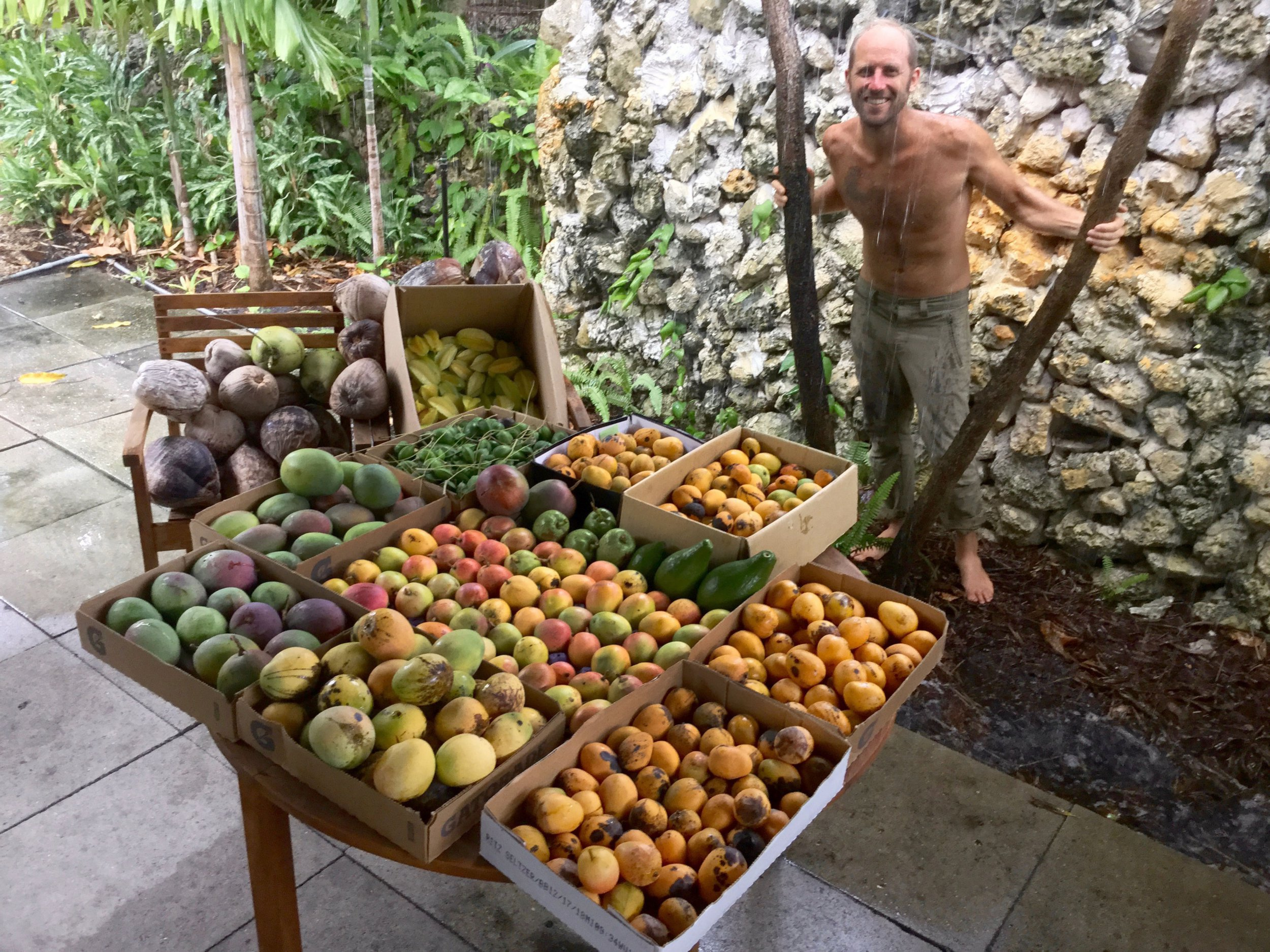 PIC BY Rob Greenfield/ CATERS NEWS (PICTURED Rob Greenfield foraging fruit in a city.) An eco-warrior built a residence for underneath ?1200 and usually grew and foraged his food for a whole year to enthuse people to rethink their food habits. On Nov 10 2018, Rob Greenfield, 33, set himself a plea to live for one year though shopping any of his groceries - instead, he had to grow and fodder it all himself. The challenge, that a environmental romantic finished yesterday, saw him build an whole residence from blemish - costing usually ?1,160 - and branch a land surrounding it into his possess fruit and veg garden. SEE CATERS COPY.