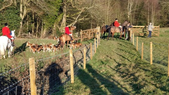 Members of the Barlow Hunt during the New Year's Day event that allegedly ended in two animal rights activists being assaulted (CREDIT. Sheffield Hunt Saboteurs/Eugene Henderson)