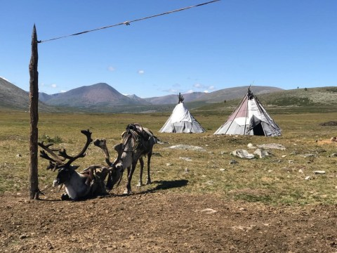 Remote Mongolian community are paying the 'first price' for climate change