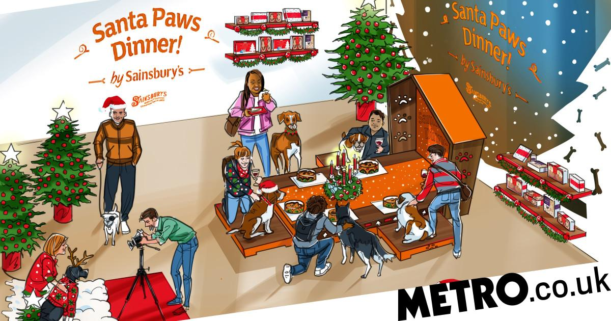 Sainsbury's has just announced a pop-up Christmas restaurant for dogs