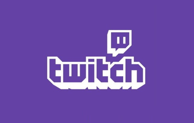 Twitch Fortnite streamer arrested after 'slapping, pushing and biting' 14-month-old child