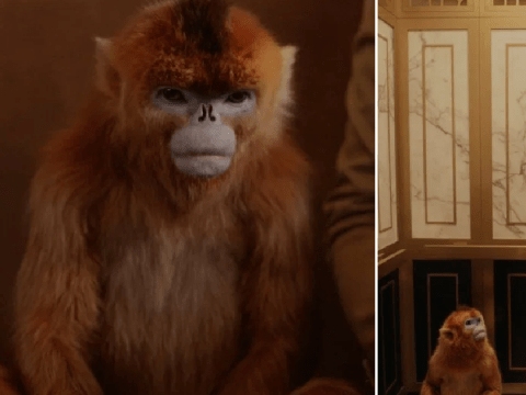 His Dark Materials axed monkey penis to keep show family friendly