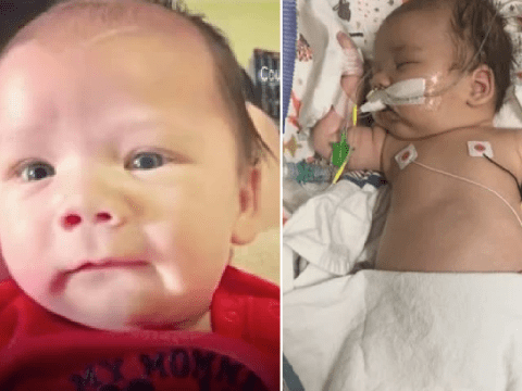 Newborn baby paralyzed after 'drinking milk contaminated with dangerous germ'