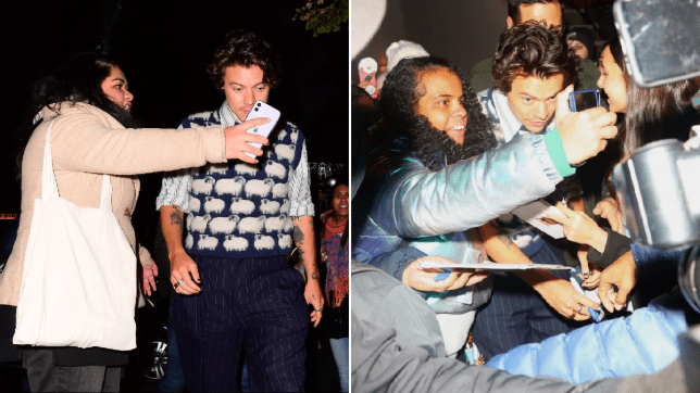 Harry Styles mobbed by fans