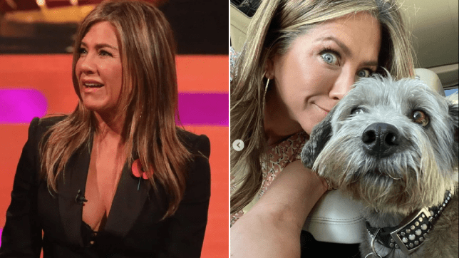 Jennifer Aniston continues to win at Instagram with seriously cute dog snap of her pup Clyde