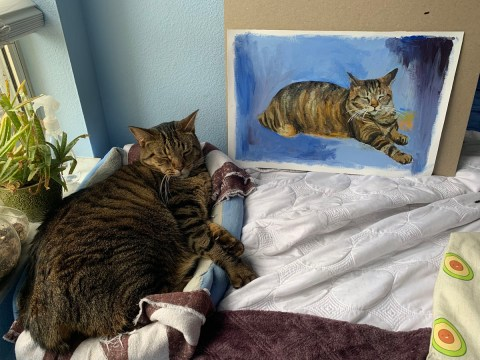 Art student surprises strangers with beautiful hand-drawn portraits of their cats