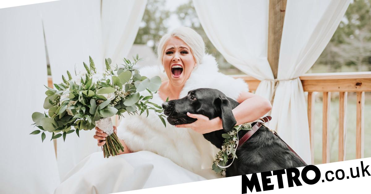 Nervous bride asks dog to join first look photos and its delightful