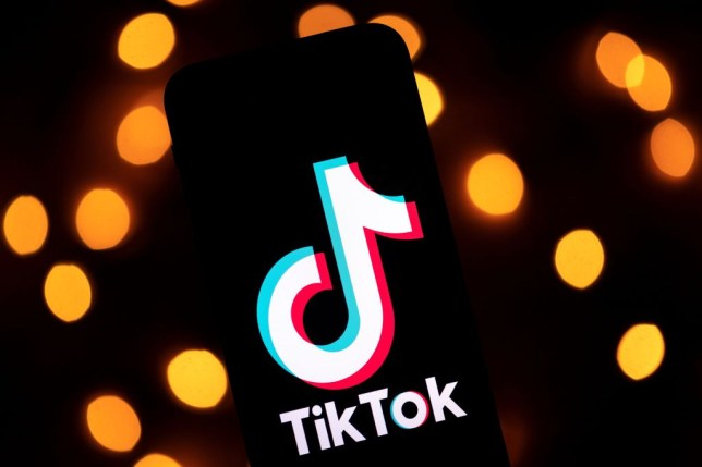 TikTok says it has moved fast to close down the security flaw (Lionel Bonaventure/AFP via Getty Images)