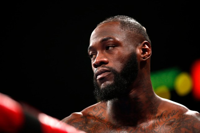 Deontay Wilder looks on