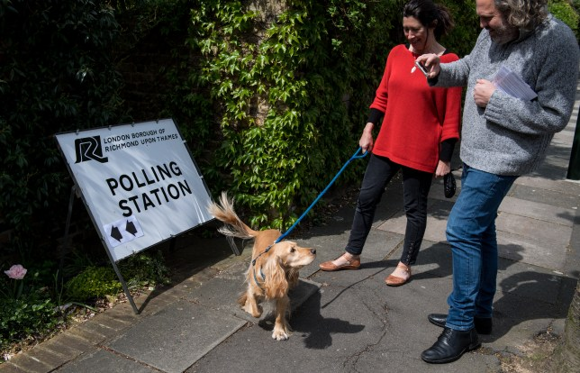 A couple take photos of their dog next to a polling station sign.