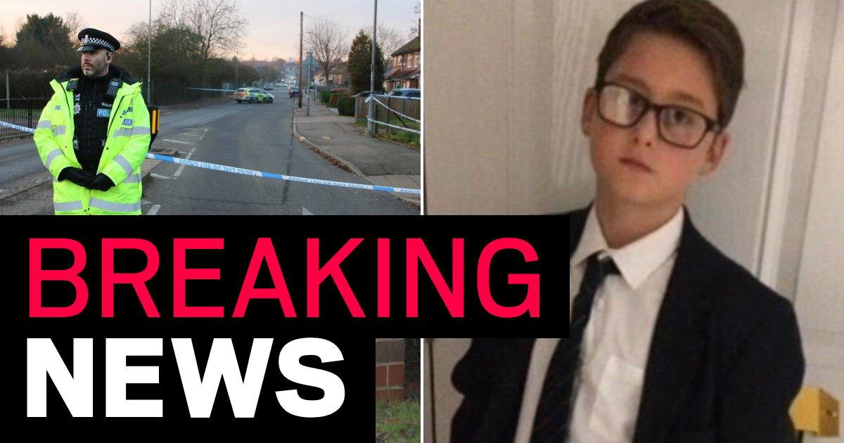 Boy killed in 'deliberate' hit and run named as Harley Watson, 12