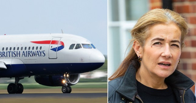Caption: \'Thirsty\' mum admits booting BA cabin crew member and calling her \'fat arse\' when she was refused alcohol on flight to South Africa