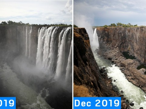 World famous Victoria Falls all but dries up in devastating drought