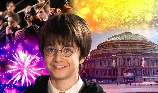 The Royal Albert Hall, Danielle Radcliffe as Harry Potter and an orchestra