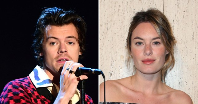 Harry Styles fans convinced Camille Rowe is behind voicemail on new album track Cherry