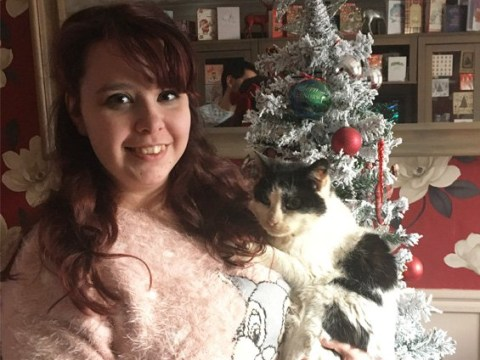Woman finds beloved 17-year-old cat two years after he went missing