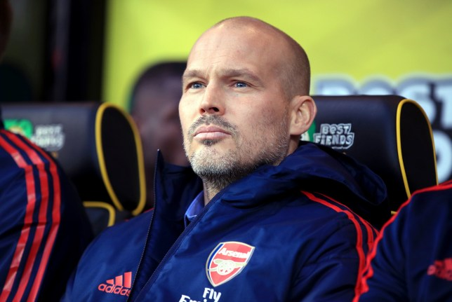 Freddie Ljungberg took charge of his first game as Arsenal drew with Norwich City