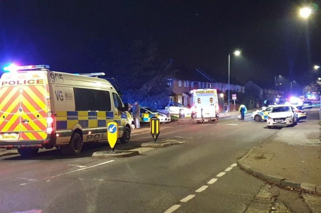 Emergency services are on the scene in Willingale Road, Loughton Witnesses claim 'multiple children' have been hit by a car