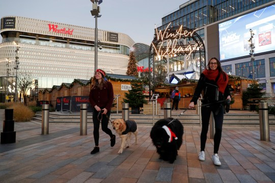 Dog guests going on a walk at the launch of Merry Mutts Motel at Westfield London