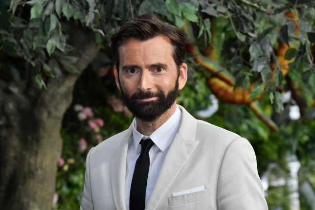 Mandatory Credit: Photo by Anthony Harvey/REX (10252805u) David Tennant 'Good Omens' TV show premiere, London, UK - 28 May 2019
