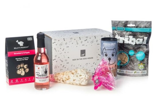 The gift set from Not In The Dog House features Billy and Margot training biscuits, Pawsecco, dog popcorn and snacks from Pooch and Mutt