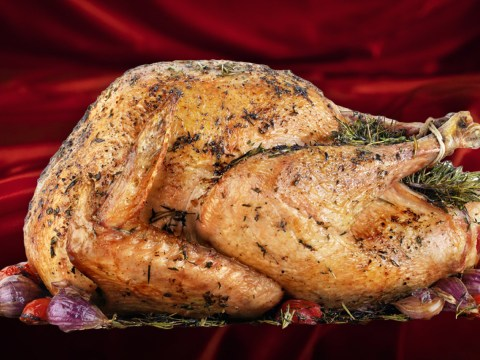Turkeys are popping up in porn videos to highlight erectile dysfunction