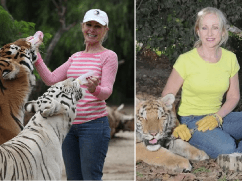Woman mauled by tigers she raised says they were 'just playing' and that they 'love her'