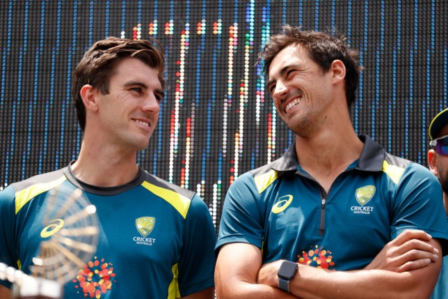 Mitchell Starc has been named in the ICC Test and ODI teams of the year