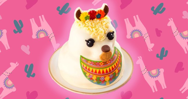 tesco's llama cake on a colourful background