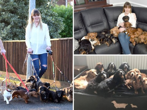 Couple buy bigger house to make space for their 14 dogs