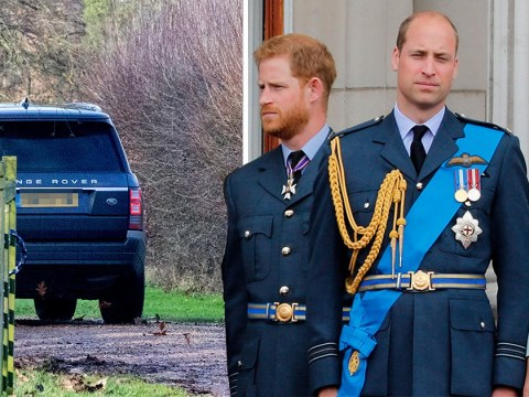Harry and William deny claims of bullying within royal family