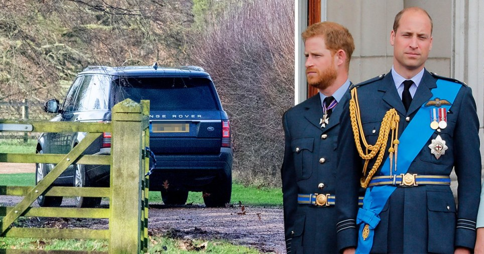 Harry and William make a rare joint statement during crunch talks at Sandringham