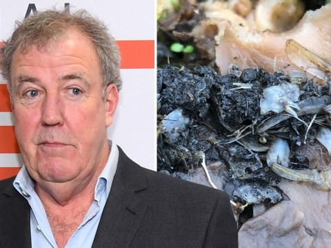 Jeremy Clarkson grosses everyone out with a photo of otter poop: 'What was the point in this?'