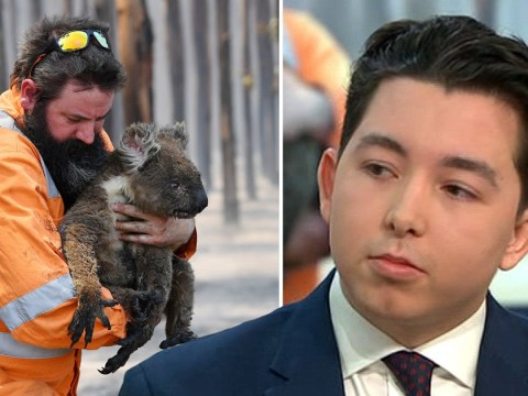 The Apprentice's Ryan-Mark Parsons promotes sale of koala fur for charity infuriating GMB viewers