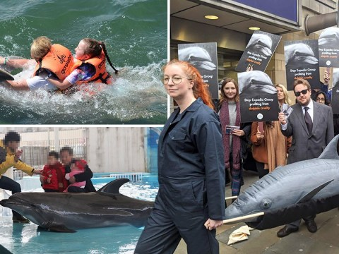 Animal rights activists storm Expedia HQ demanding it 'stops profiting from dolphin cruelty'