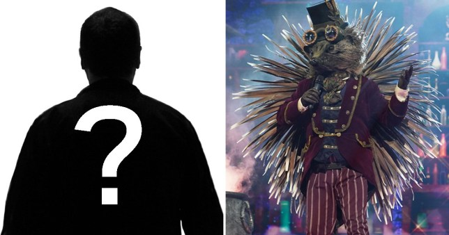The Masked Singer fans miss massive clue as Hedgehog accidentally gives away identity
