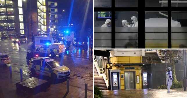 Boy, 16, 'hacked to death with machete' was killed in frenzied attack lasting 40 seconds