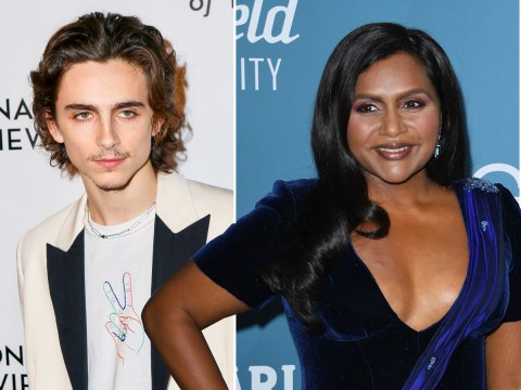 Timothee Chalamet, Mark Ruffalo and Mindy Kaling among stars set to present Oscars 2020