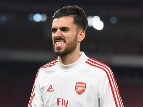 Mikel Arteta plans to play Dani Ceballos in an advanced role for Arsenal