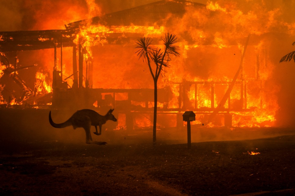 A kangaroo rushes past a burning house in Conjola, Australia, on Tuesday, Dec. 31, 2019. The country's east coast is dotted with apocalyptic scenes on the last day of the warmest decade on record in Australia. (Matthew Abbott/The New York Times) Credit: New York Times / Redux / eyevine For further information please contact eyevine tel: +44 (0) 20 8709 8709 e-mail: info@eyevine.com www.eyevine.com
