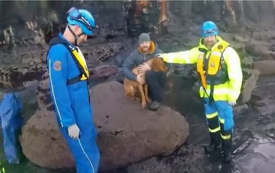 This is the dramatic video footage showing the rescue of a dog who had a lucky escape when it fell down a sheer 65ft drop - suffering just a broken leg. See SWNS story SWLEsaved; Duke the Hungarian vizsla dropped from the cliff edge at picturesque Saltwick Nab on the east coast in North Yorks., and was stranded on the beach below. His owner called the coastguard after the accident on December 31, who, along with Whitby RNLI, rescued the frightened pooch in a lifeboat and brought him to safety. It was decided that the best way to rescue him would be to approach by sea - rather than by scaling the steep cliffs in slippy and cold conditions. The RNLI volunteers took the dog's owner on their mission to help keep the dog calm. The owner and Duke were returned safely to Whitby lifeboat station where family were waiting to take the dog straight to the vets.