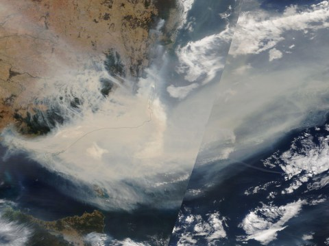 Smoke from Australian wildfires will make a 'full circuit' around Earth, Nasa says