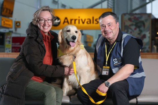 Southampton International Airport has, today, employed some four-legged helpers. The Canine Crew, a pack of therapy dogs from the charity Therapy Dogs Nationwide, were stationed in arrivals as well as departures along with their volunteer handlers. Having trialled the initiative in 2019 on a temporary basis, the furry faced employees will be a semi-permanent setting at the airport and will be on patrol once a week. On a mission to help soothe nervous fliers and passengers with hidden disabilities, the therapy dogs are fully temperament tested and highly experienced in their trade. Commenting on the launch of Canine Crew, Simon Young, Head of Passenger Operations, said: ?Having therapy dogs in our airport will not only benefit our passengers but also our staff. ?Four legged companions are well known for boosting general happiness, wellbeing as well as mood and we are very excited to welcome them to the Southampton Airport family. ?Our sister airport in Aberdeen was the first in the country to trial airport therapy dogs and we are happy to be carrying on that legacy.? Paulette Hockley, Placement Officer at Therapy Dogs Nationwide, added: ?We are very privileged to have passionate volunteers who keep our charity running by taking their own dogs into establishments to give comfort, distraction and stimulation. ?We are looking forward to working with Southampton Airport and sharing the benefits of Animal Assisted Therapy with both passengers and team members?