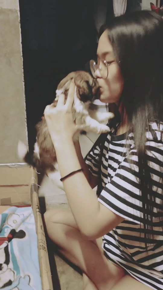 KARYELLE, 18, PICKS UP EACH SHIH TZU PUPPY AND KISSES IT A NUMBER OF TIMES ON ITS NOSE