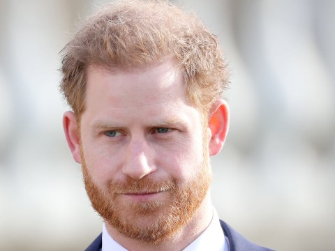 Prince Harry's lack of education could prevent him moving to Canada