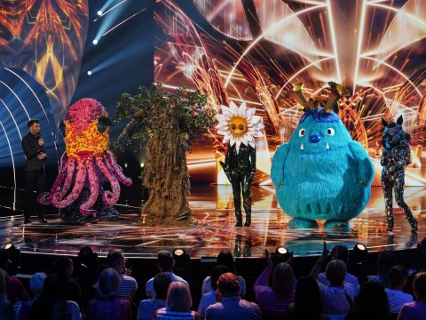 Who was the fourth celebrity unmasked on The Masked Singer last night?