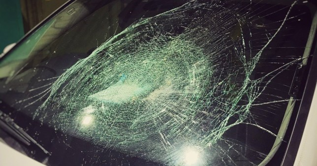 Police are investigating more than a dozen incidents of large vegetables being thrown at moving vehicles.In the latest incident a swede was lobbed at a police armed response patrol car responding to an emergency on Sunday night, smashing its windscreen and causing ?500 of damage.