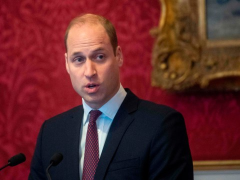Prince William handed new role by Queen as Prince Harry steps down